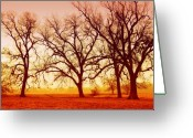Winter Trees Digital Art Greeting Cards - Trees in the farm in Fall Greeting Card by Iris Greenwell