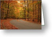 Colors Of Autumn Greeting Cards - Trees Of Autumn - Holmdel Park Greeting Card by Angie McKenzie
