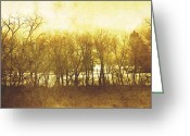 Pano Greeting Cards - Trees Pano Greeting Card by Scott Norris