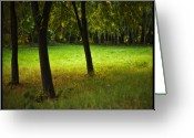 Licht Greeting Cards - Trees  Greeting Card by Renata Vogl