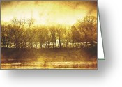 Wisconsin Greeting Cards - Trees Greeting Card by Scott Norris