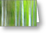 Green Photo Greeting Cards - Trees Greeting Card by Silke Magino