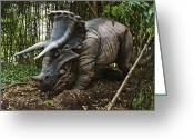 Dinosaurs Greeting Cards - Triceratops Greeting Card by David Davis and Photo Researchers