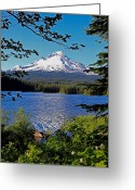 Trillium Lake Greeting Cards - Trillium Lake at Mt. Hood II Greeting Card by Athena Mckinzie