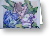 Soft Drawings Greeting Cards - Trilogy Greeting Card by Joyce Hutchinson