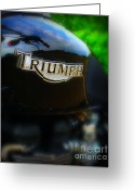 Biker Greeting Cards - Triumph Greeting Card by Perry Webster