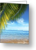 Sunlight Greeting Cards - Tropical Beach Greeting Card by Carlos Caetano