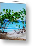 Dominica Alcantara Greeting Cards - Tropical Beach Greeting Card by Dominica Alcantara