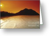 Surf Silhouette Greeting Cards - Tropical Beach Greeting Card by Juan  Silva