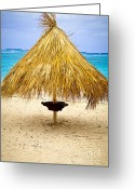 Escape Greeting Cards - Tropical beach umbrella Greeting Card by Elena Elisseeva