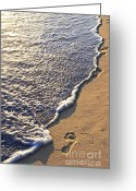 Summer Beach Ocean Greeting Cards - Tropical beach with footprints Greeting Card by Elena Elisseeva