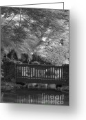 On-the-look-out Greeting Cards - Tropical Bridge in BW Greeting Card by Darcy Michaelchuk