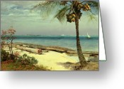 Tropical Beach Painting Greeting Cards - Tropical Coast Greeting Card by Albert Bierstadt