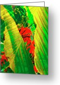 Palm Leaf Digital Art Greeting Cards - Tropical Fusion Greeting Card by Stephen Anderson