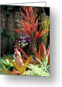 Bromeliad Greeting Cards - Tropical Garden Greeting Card by Karon Melillo DeVega