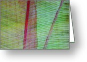 Art In Squares Greeting Cards - Tropical Leaves No 11  2009 Greeting Card by Joseph Duba