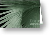 Palm Leaf Greeting Cards - Tropical Palm  Greeting Card by Ann Powell