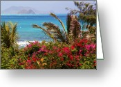 Tropical Island Photo Greeting Cards - Tropical Paradise Greeting Card by Mitch Cat