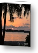 Beach Pictures Greeting Cards - Tropical Sunset Greeting Card by Corinne Rhode