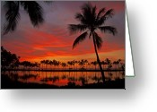 Tropical Sunset Greeting Cards - Tropical Sunset Reflections Greeting Card by Jennifer Crites