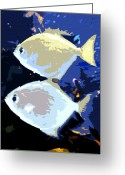 Sea Life Digital Art Greeting Cards - Tropical Twins Greeting Card by David Lee Thompson