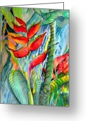 Drawing Of Bird Greeting Cards - Tropical Waterfall Greeting Card by Mindy Newman