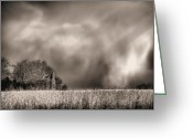 Raining Greeting Cards - Trouble Brewing BW Greeting Card by JC Findley