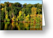 True Colors Greeting Cards - True colors of Fall 2010 Greeting Card by Joshua Fronczak