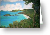 Teresa Dominici Greeting Cards - Trunk Bay Greeting Card by Teresa Dominici