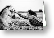 Horse Greeting Cards - Trustful Friendship  Greeting Card by Justyna Lorenc