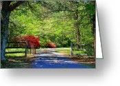 Driveways Greeting Cards - Tucked Away Greeting Card by Kathryn Meyer