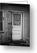 Screen Doors Greeting Cards - Tuff Times 2 Greeting Card by Perry Webster