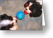 Spaniels Greeting Cards - Tug of War Greeting Card by Jai Johnson