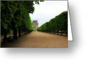 Tuileries Greeting Cards - Tuileries Gardens 2 Greeting Card by Andrew Fare