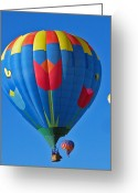 Elizabeth Rose Greeting Cards - Tulip Hot Air Balloon Greeting Card by Elizabeth Rose