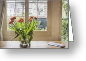 Window Panes Greeting Cards - Tulips in a Vase Greeting Card by Andersen Ross