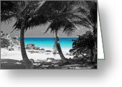 Travelpixpro Greeting Cards - Tulum Mexico Beach Color Splash Black and White Greeting Card by Shawn OBrien
