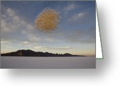 Utah Weather Greeting Cards - Tumbleweed In Mid Air Greeting Card by John Burcham