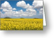Rapeseed Greeting Cards - Tumuli Greeting Card by Gabriela Insuratelu