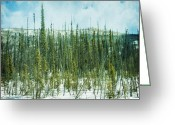 Thin Greeting Cards - Tundra Forest Greeting Card by Priska Wettstein