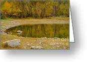 Reflections In Water Greeting Cards - Tunnel Pond Greeting Card by Idaho Scenic Images Linda Lantzy