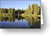 Tuolumne Greeting Cards - Tuolumne Meadows Greeting Card by Martina Thompson