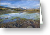 Tuolumne Greeting Cards - Tuolumne Meadows Yosemite National Park Greeting Card by Dean Pennala