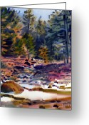 Tuolumne Greeting Cards - Tuolumne River in October Greeting Card by Donald Maier