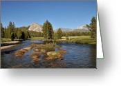 Tuolumne Greeting Cards - Tuolumne River  Greeting Card by Martina Thompson