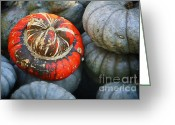 Arboretum Greeting Cards - Turban pumpkin Greeting Card by Joan Carroll