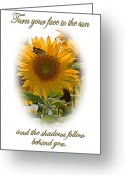 Cheery Greeting Cards - Turn Your Face to the Sun Greeting Card by Kristin Elmquist