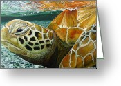 Jon Ferrentino Greeting Cards - Turtle Me Too Greeting Card by Jon Ferrentino