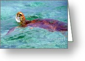 Sea Turtles Greeting Cards - Turtle Time Greeting Card by Karen Wiles