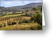 Vista Greeting Cards - Tuscan Valley Greeting Card by David Bowman